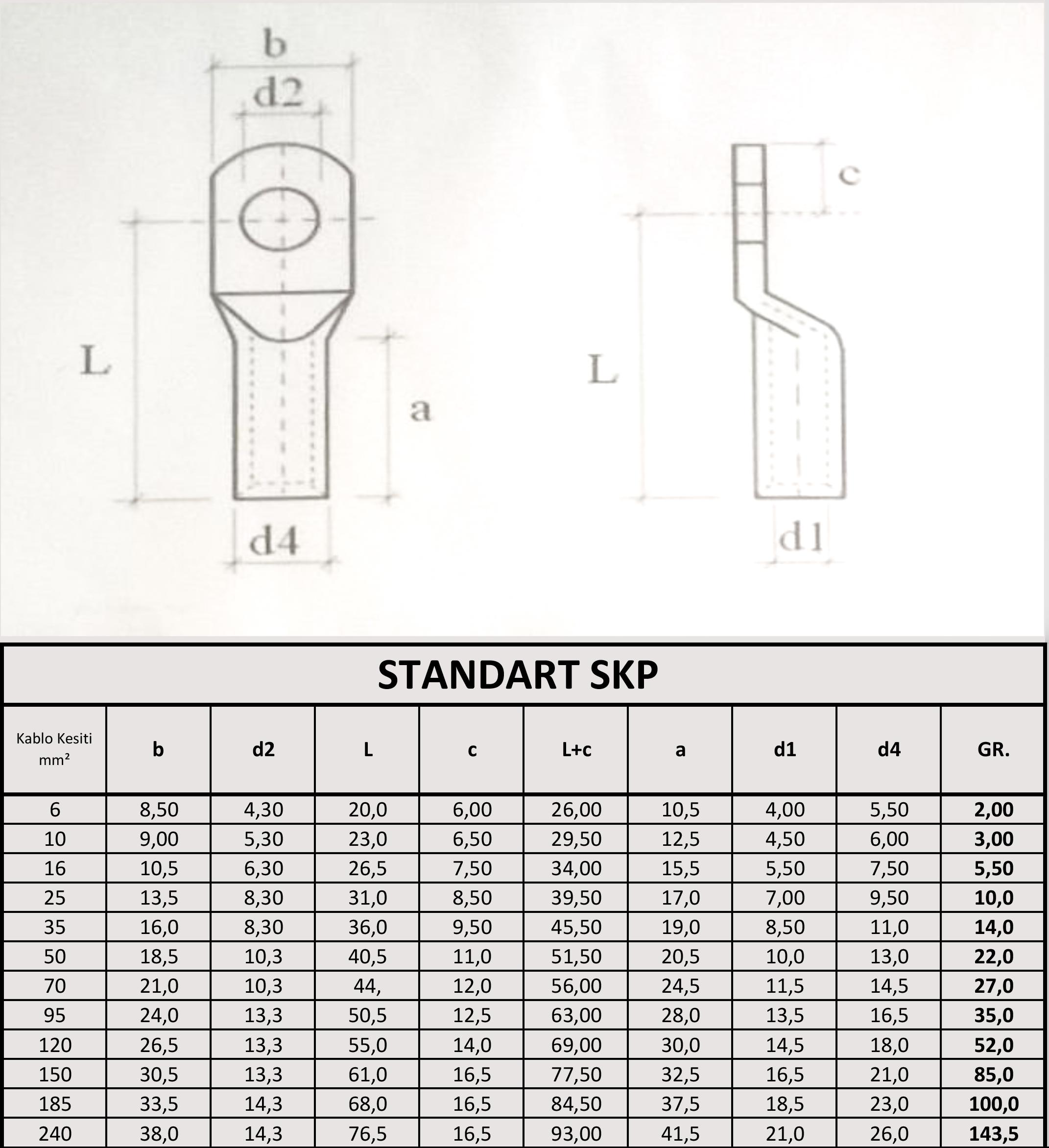 Standart skp ölçüleri